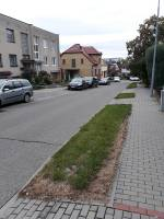 ulice Obecká (zdroj: autorka článku)