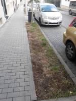 ulice Štítného (zdroj: autorka článku)
