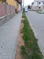 ulice Střelnice (zdroj: autorka článku)