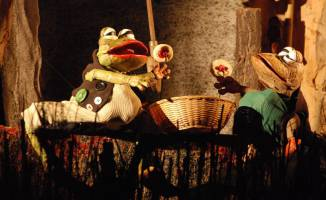 Žabáci (foto: Bořek Hájek)